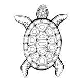 Turtle animal graphic black white  illustration Royalty Free Stock Photos