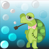 Turtle on a background with soap bubbles. Turtle with a tube blowing bubbles in the background Royalty Free Stock Photos