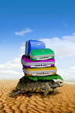 Turtle with baggage Royalty Free Stock Image