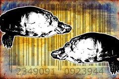 Turtle barcode animal design art idea Royalty Free Stock Photos