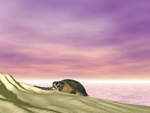 Turtle at Beach. Rendered turtle at sunset beach Royalty Free Stock Image