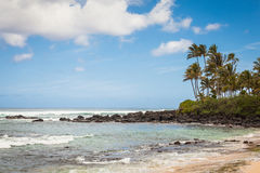 Turtle Beach Seascape. Seascape at Turtle Beach on north shore of Oahu, Hawaii on a sunny day with blue sky and clouds Stock Photos