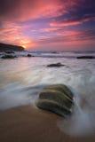 Turtle. Beach winch area of Cascais, Portugal Stock Photos