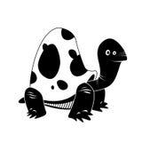 Turtle - black & white animal series Stock Photos