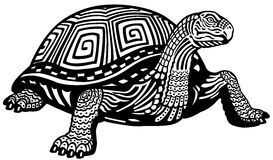 Turtle black white Royalty Free Stock Image