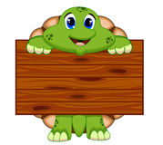 Turtle with board Royalty Free Stock Image