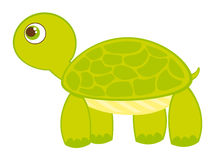 Turtle cartoon Royalty Free Stock Photos