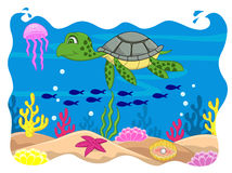 Turtle cartoon Royalty Free Stock Images
