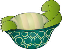Turtle cartoon Royalty Free Stock Image