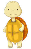 Turtle cartoon character Royalty Free Stock Photography