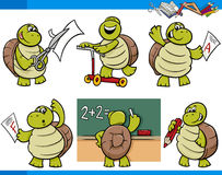 Turtle character student cartoon set Stock Photography