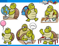 Turtle character student cartoon set Stock Photos