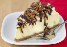 Turtle Cheese Cake Stock Image