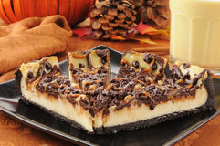 Turtle cheesecake Stock Image