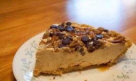 Free Turtle Cheesecake Royalty Free Stock Photos - 47917818