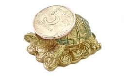 Turtle with Coin Rouble Royalty Free Stock Photography
