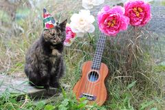 Cat with Ukulele and Peonies