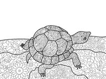 Turtle coloring book for adults vector Royalty Free Stock Images
