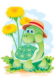 Turtle among colors Royalty Free Stock Photos
