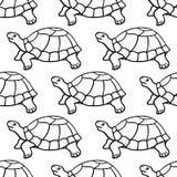 Turtle contour pattern Royalty Free Stock Photos