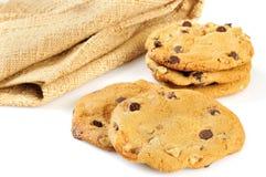 Turtle cookies Stock Photos