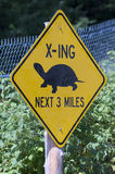 Turtle Crossing. A yellow sign with an image of a turtle, warning people of their crossing in the area Stock Image