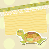 Turtle Royalty Free Stock Photo
