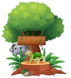 A turtle and an elephant under the big tree with a wooden signbo Royalty Free Stock Images