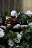 Turtle Family. Crocheted turtle family with one turtle still hatching stock photo