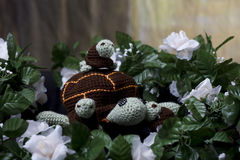 Turtle Family. Family of crocheted turtles with 3 baby turtles stock photos