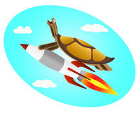 Turtle flying Royalty Free Stock Photo