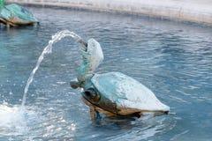 Turtle fountain Stock Photos