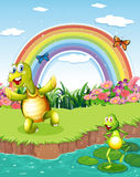A turtle and a frog playing at the pond with a rainbow above Stock Photo