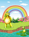A turtle and frog at pond with rainbow in the sky Royalty Free Stock Image