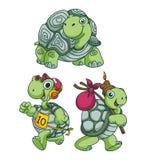Turtle Funny Cartoon Stock Photo