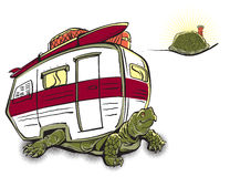 Turtle Goes Camping Stock Photo