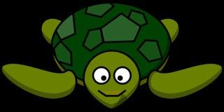 Turtle, Happy, Animal, Marine Stock Images