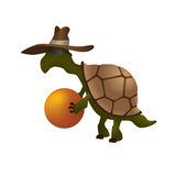 Turtle in hat Royalty Free Stock Image