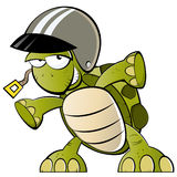 Turtle with a helmet. A turtle wearing a helmet Royalty Free Stock Images