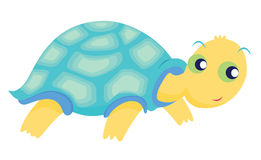 Turtle illustration Royalty Free Stock Photo