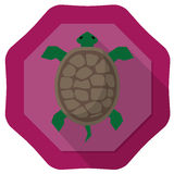 Turtle illustration. With purple badge backgground and drop shadow Stock Photos