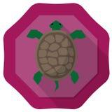 Turtle illustration Stock Photos