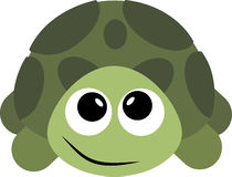 Turtle. Image of an . Stock Photos