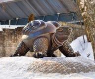 Turtle jurmala, Latvia Stock Photos