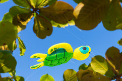 Turtle kite flying Stock Photography