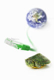 Turtle, Lan cable and world globe Stock Photography