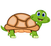 Turtle with light brown colour Royalty Free Stock Images