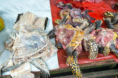 Turtle Meat in a Market in Iquitos, Peru. Turtle and Caiman meat in the Belen market in Iquitos, Peru stock photo