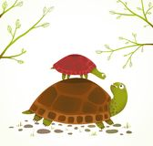 Turtle Mother and Baby Childish Animal Cartoon Royalty Free Stock Images