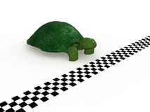 Turtle near the finish line №1 Royalty Free Stock Photo